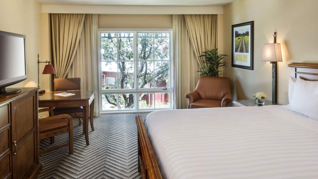 King guestroom with a outdoor view at Hyatt Regency Hill Country Resort & Spa