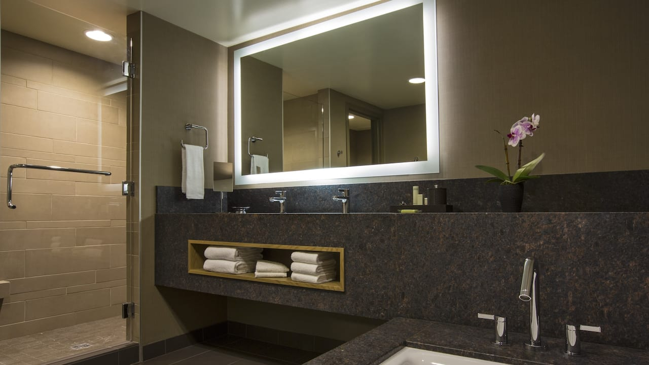Bath and vanity in Junior King and Family Suite bathroom