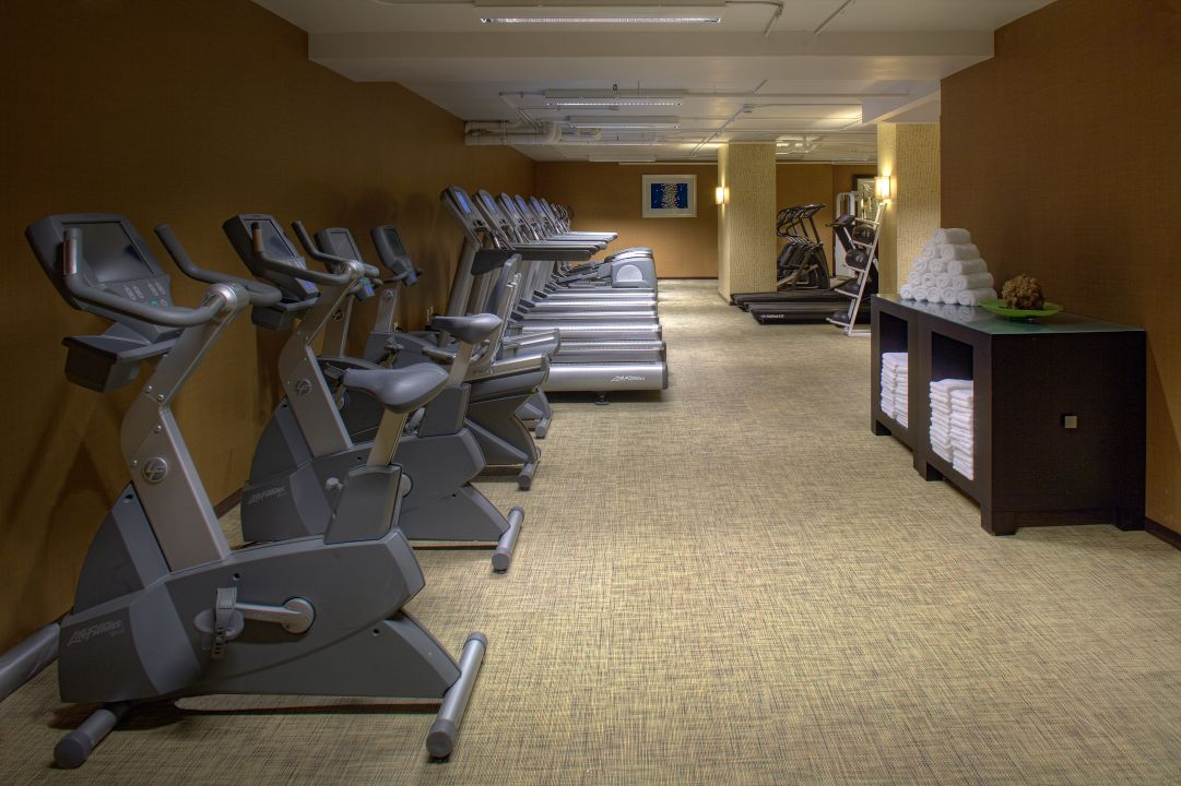 Stationary bikes and treadmills against wall in fitness center