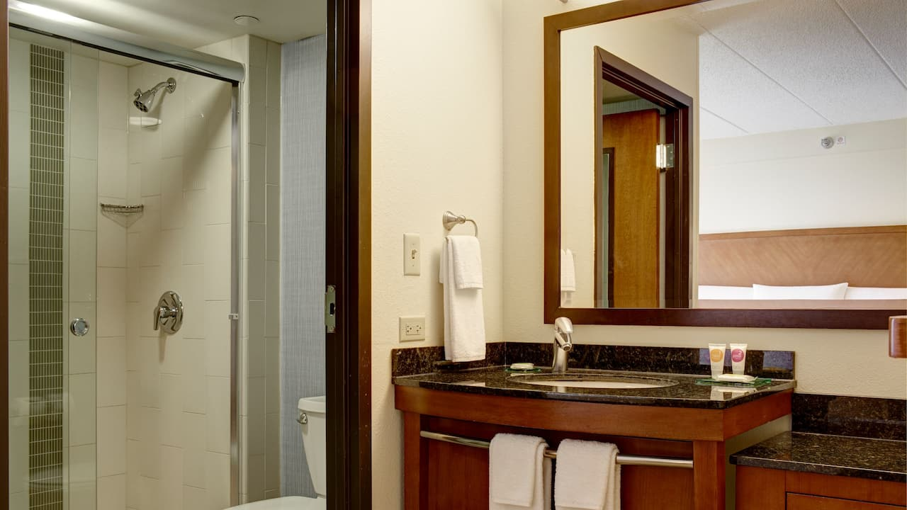 Hyatt Place Orlando / Convention Center bathroom, side view.