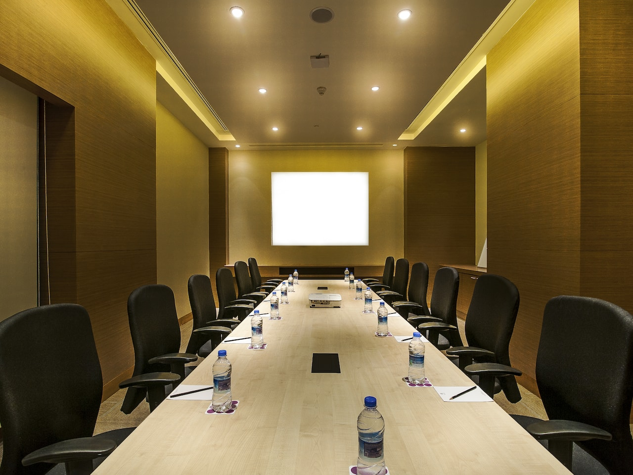 Meeting Room - Hyatt Place Hampi