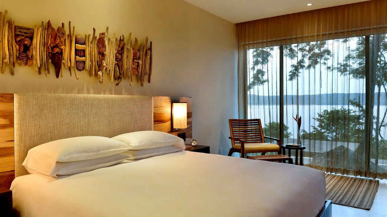 Andaz King Bed View