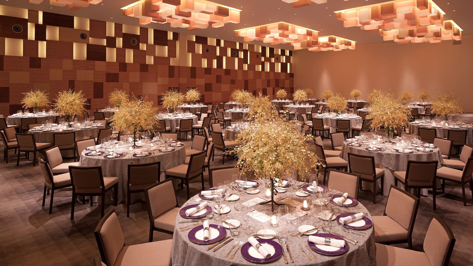 Special Occasions & Event Venues The Grand Hyatt, Singapore, Orchard Road