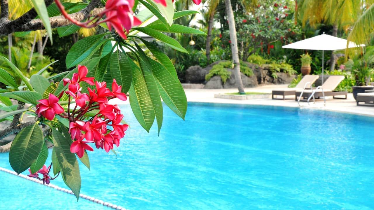 Best Hotel Pool in Jakarta
