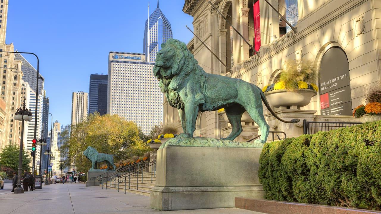 Art museum lion