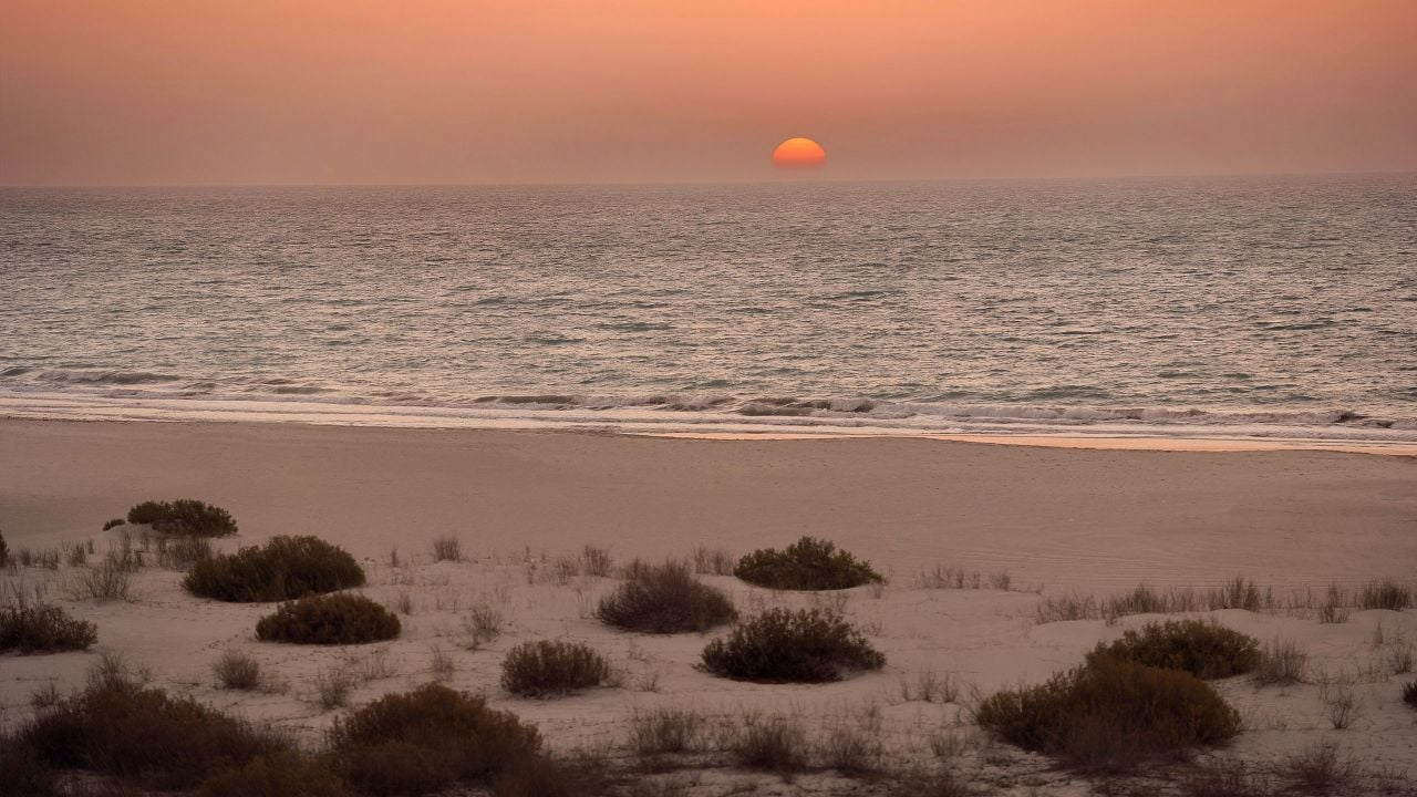 Sadiyat Beach