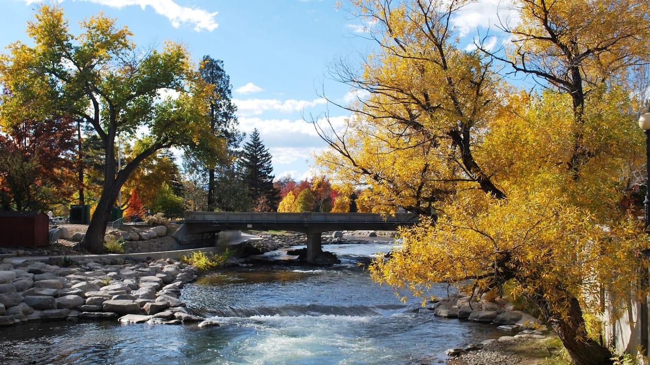 Quiet Stream in Fall