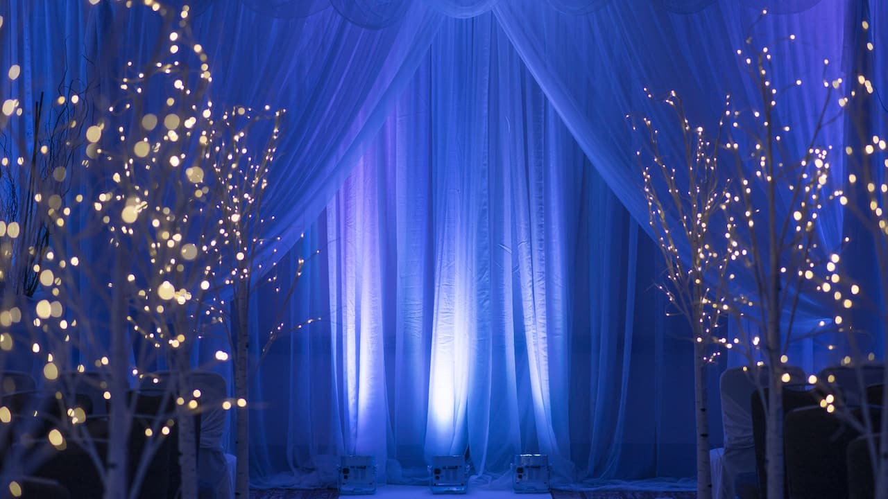 wedding ceremony Hyatt Regency Reston