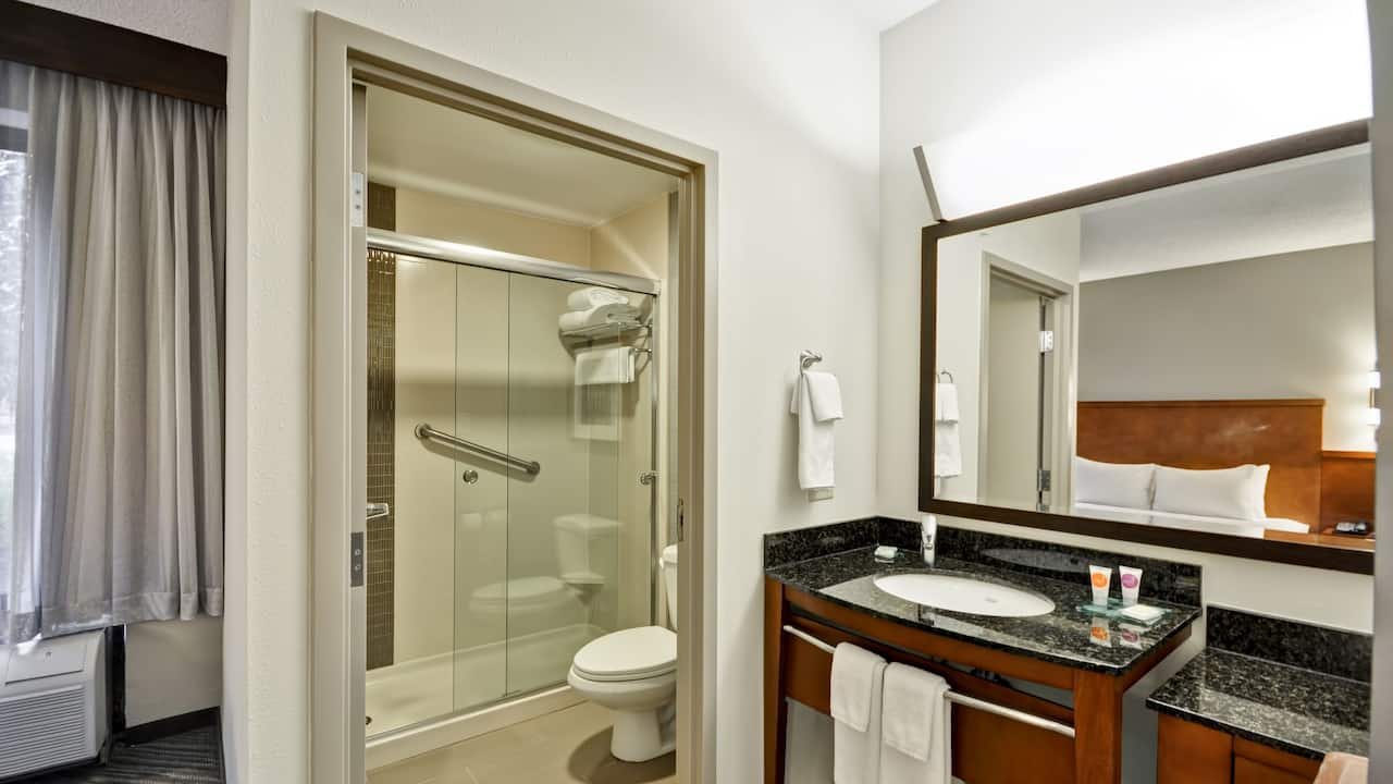 Hyatt Place Tampa Airport/Westshore Standard Bathroom