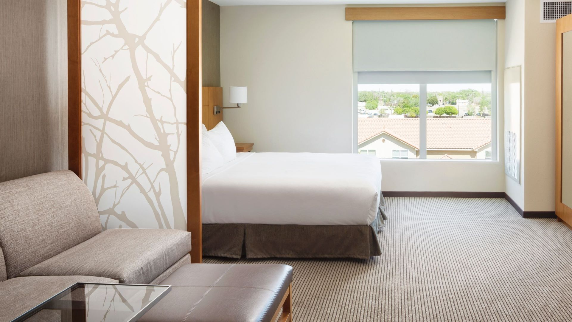 Hyatt Place Lubbock, TX – King Bed with sofa bed