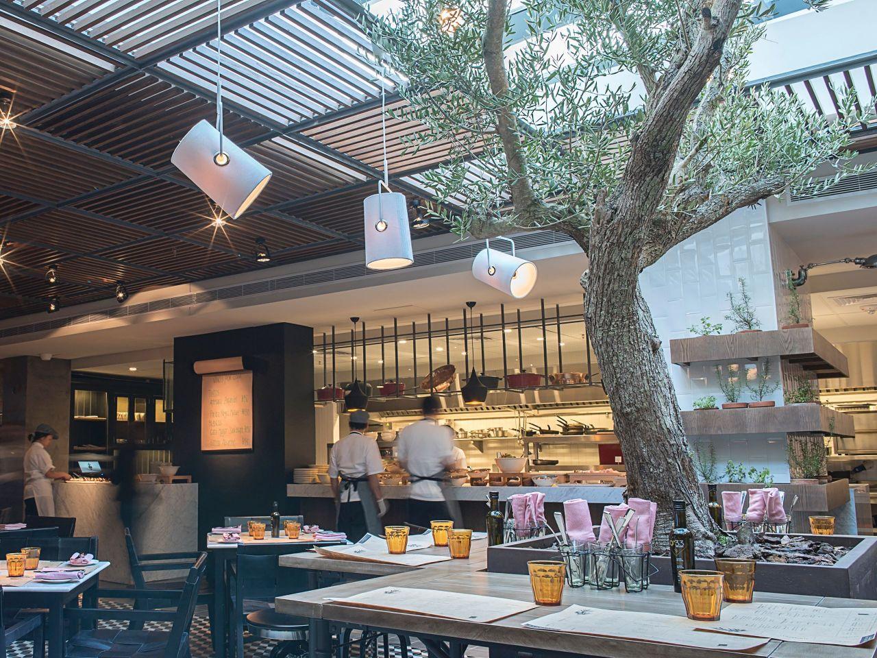 Plantado Restaurant