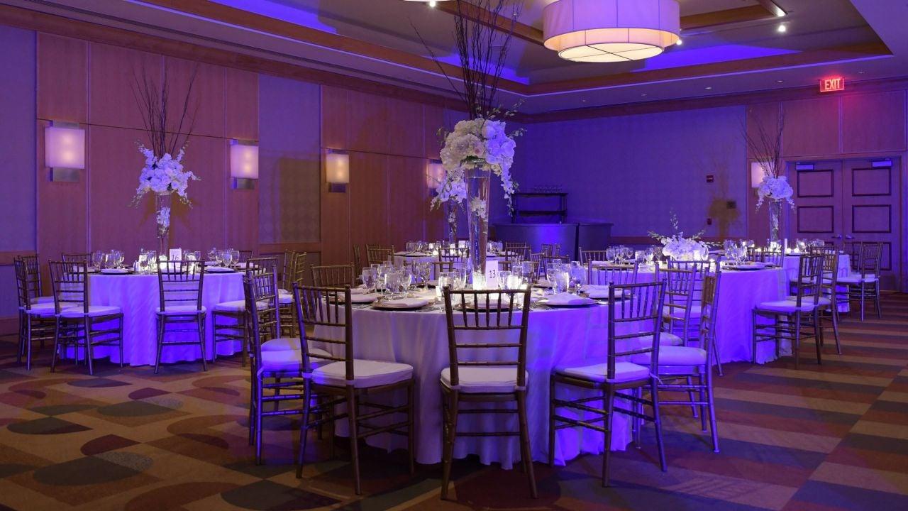 Wedding Plaza Uplighting