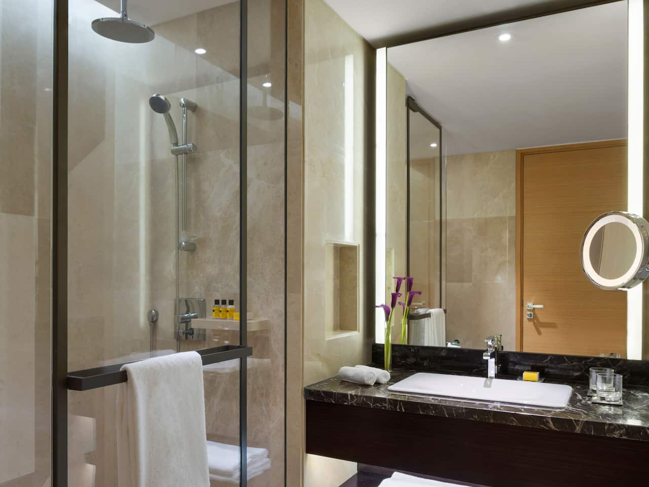 Standard Room Restroom