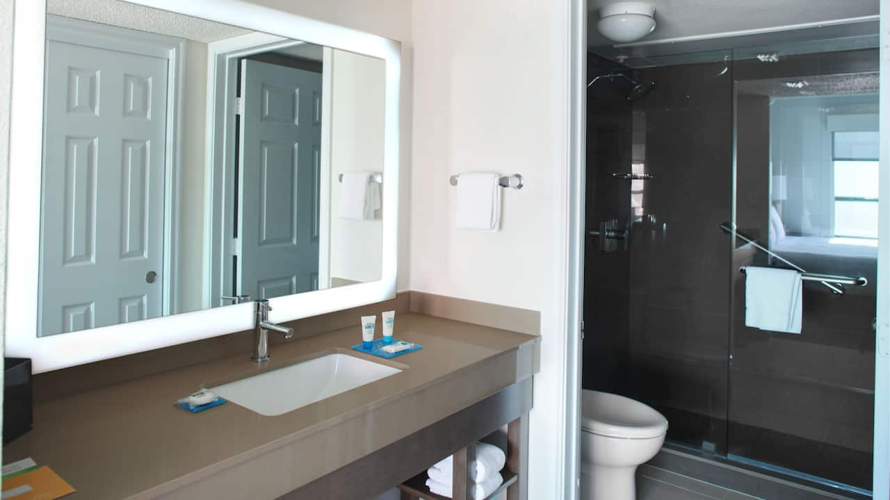 HYATT HOUSE DALLAS/UPTOWN | Bathroom
