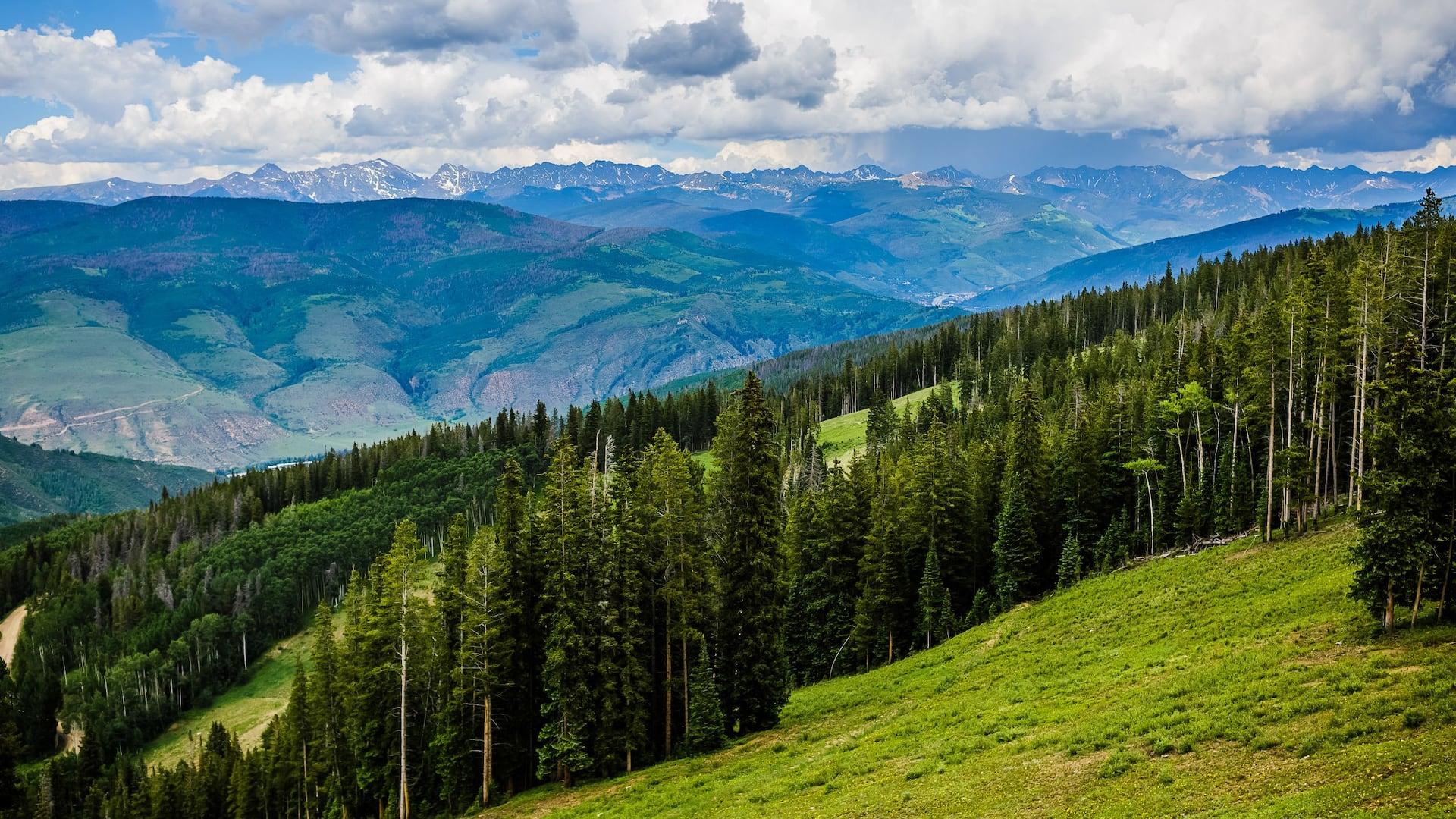 Mountains Scenic Trees