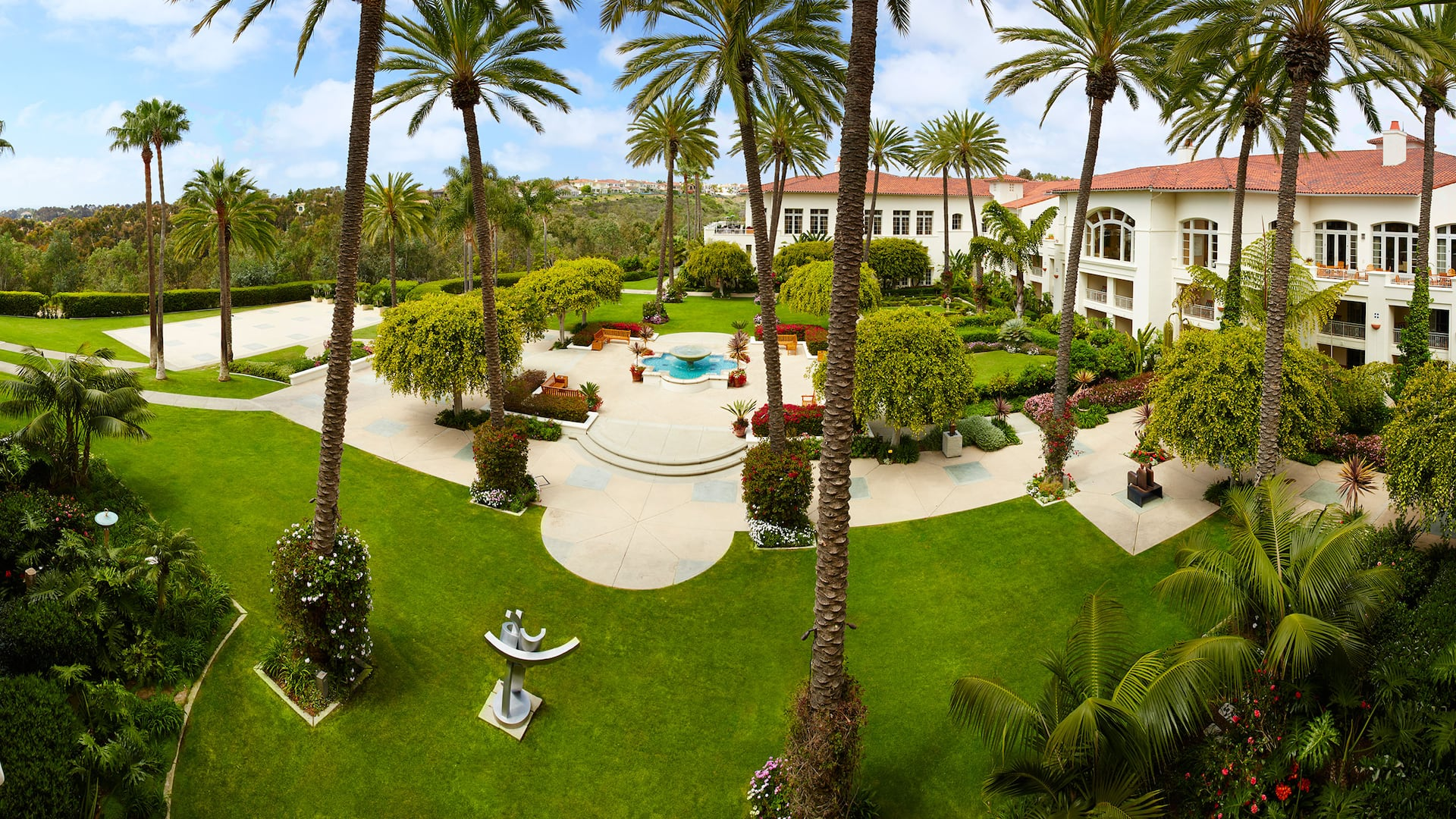 Palm tree courtyard
