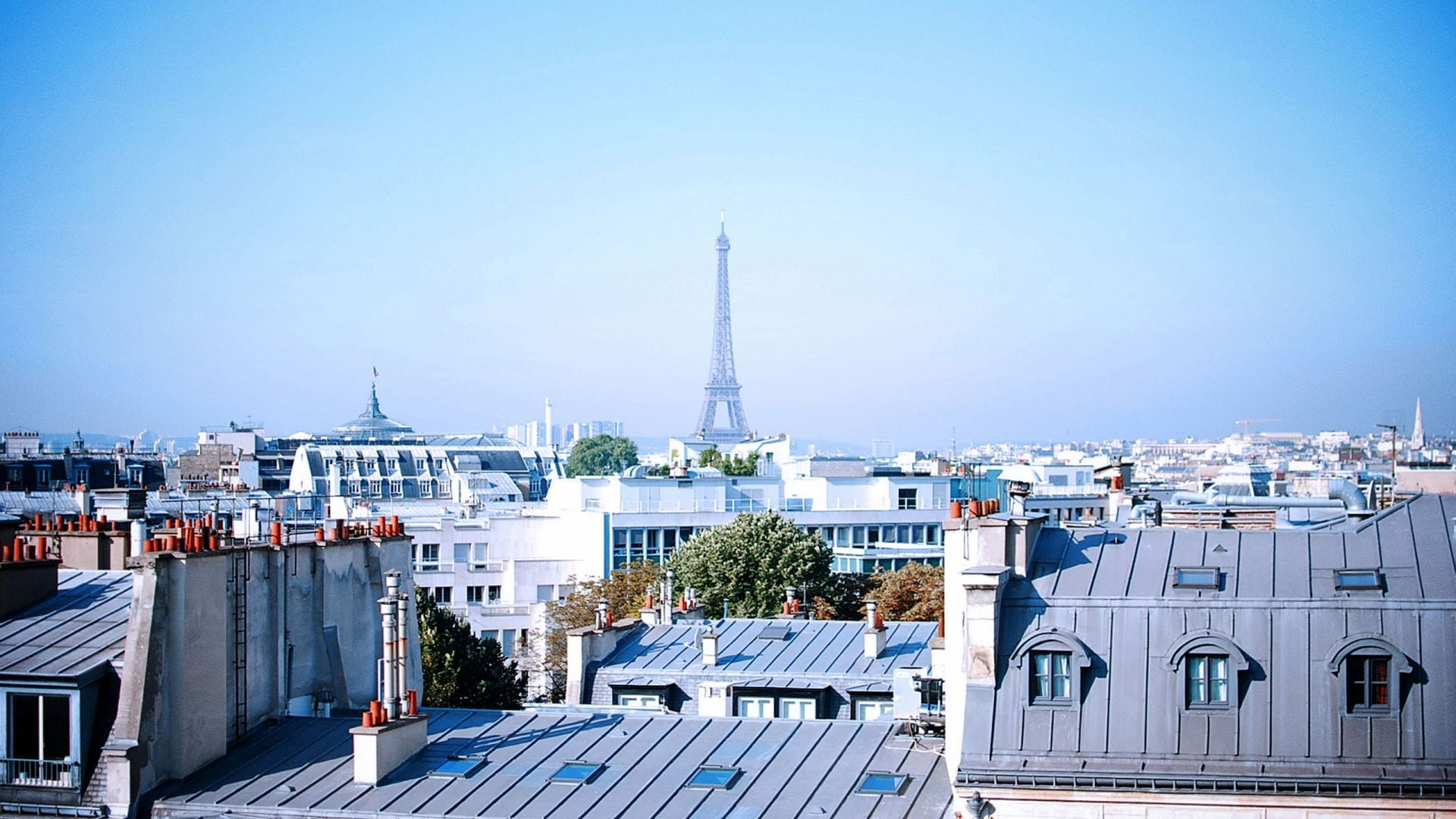 Rooftop view of Paris and Eiffel Tower