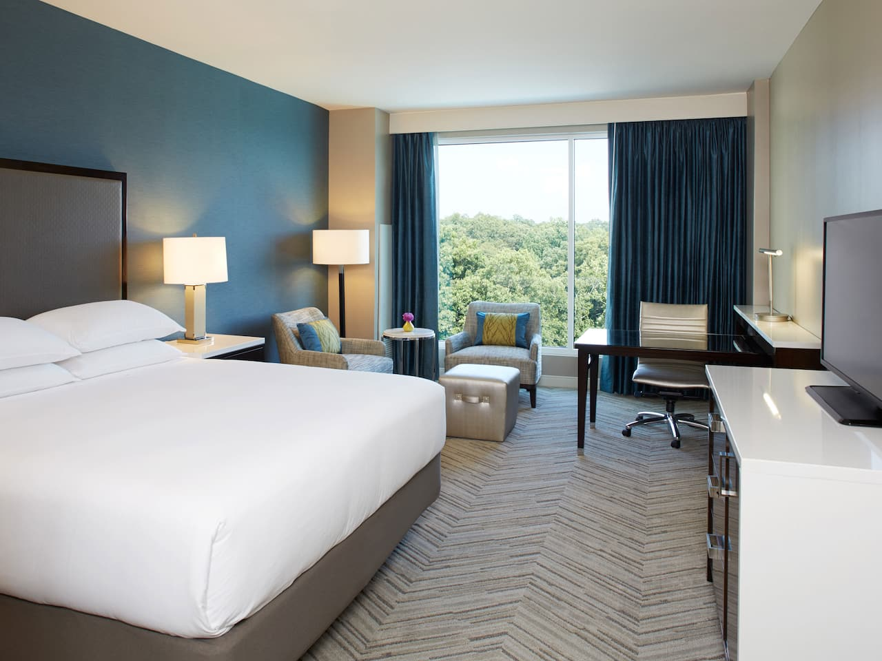 Deluxe King Hyatt Regency Atlanta Perimeter at Villa Christina