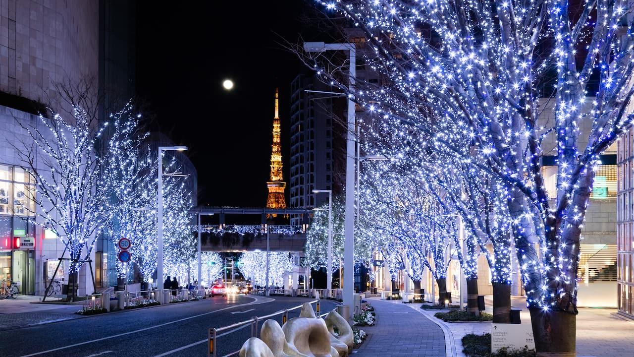 Grand Hyatt Tokyo Grand Keyakizaka Illumination グランド ハイアット 東京 けやき坂 クリスマスイルミネーション