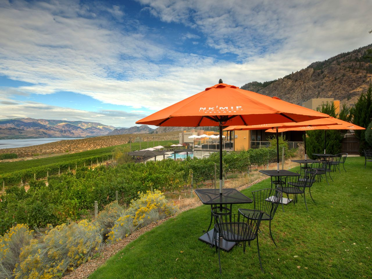 Winery Restaurant Seating