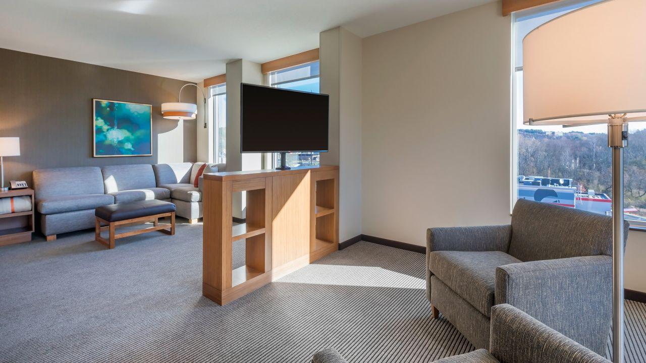 one bedroom suite kitchen king bed sofa bed