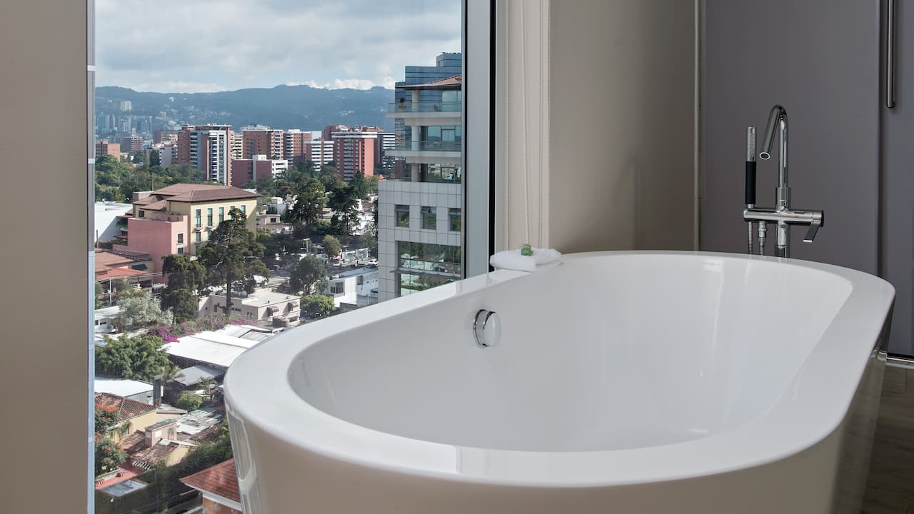 bathtub city view
