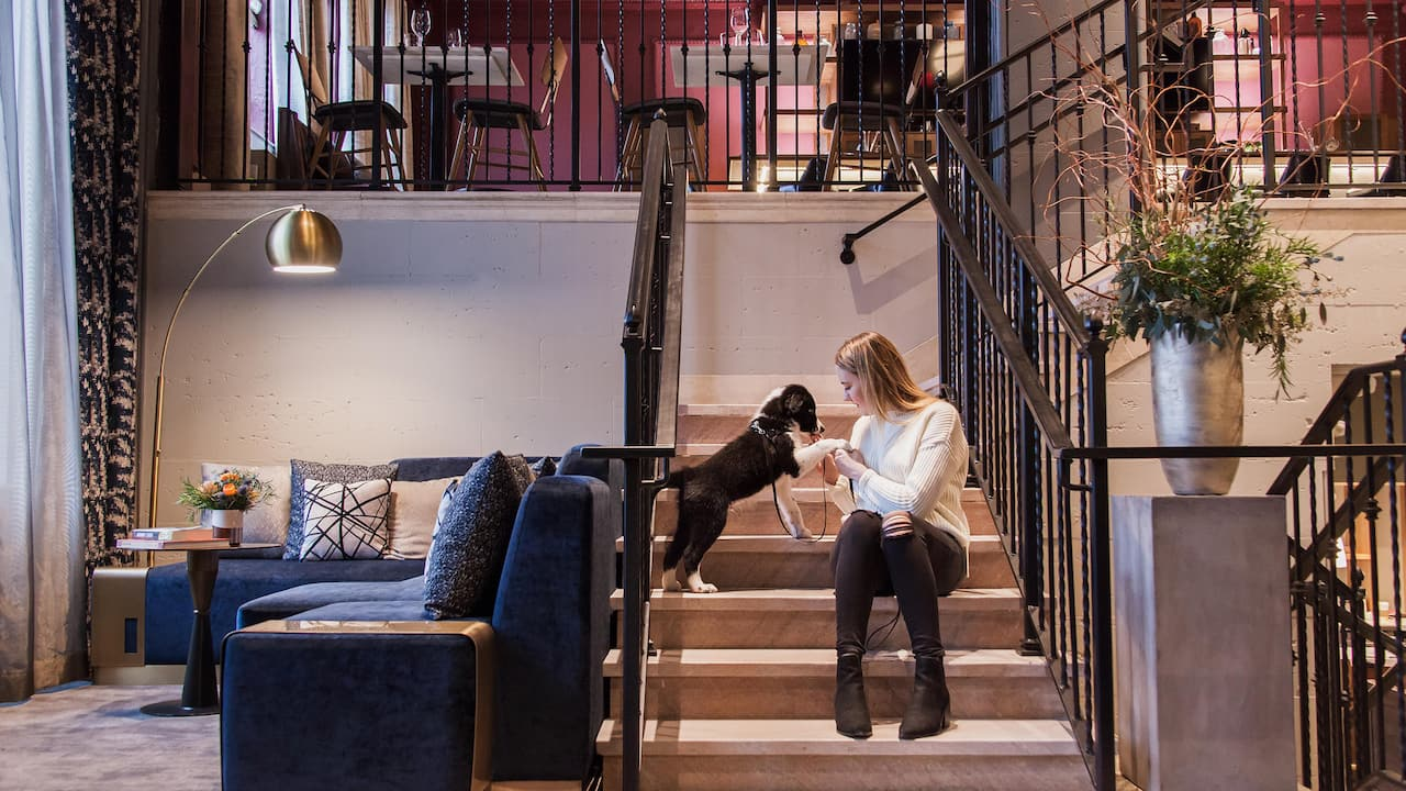 Woman with her dog at Holston House, a pet friendly hotel in Nashville
