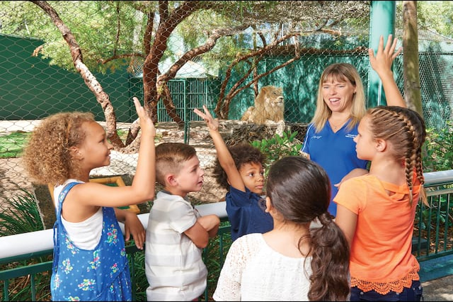 kids secret garden