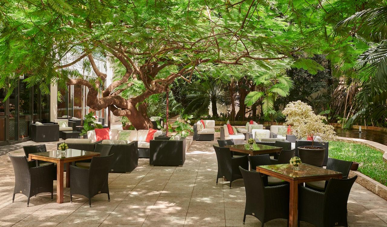 Flame Tree Lounge