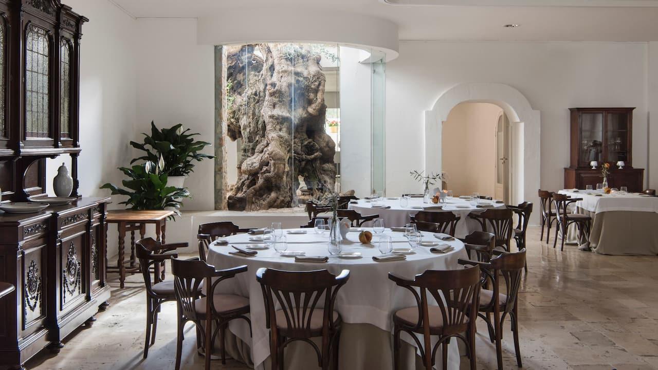 Ulivo-Restaurant