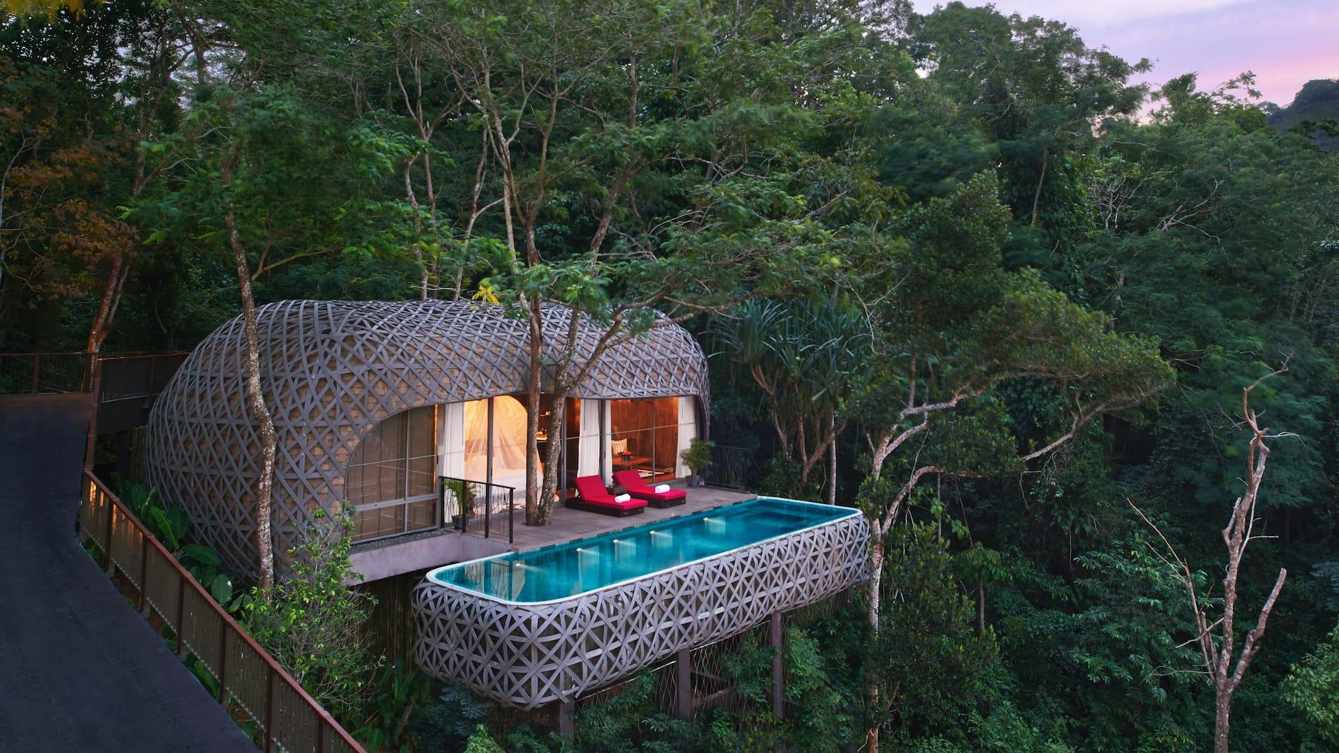 Birds nest pool villa