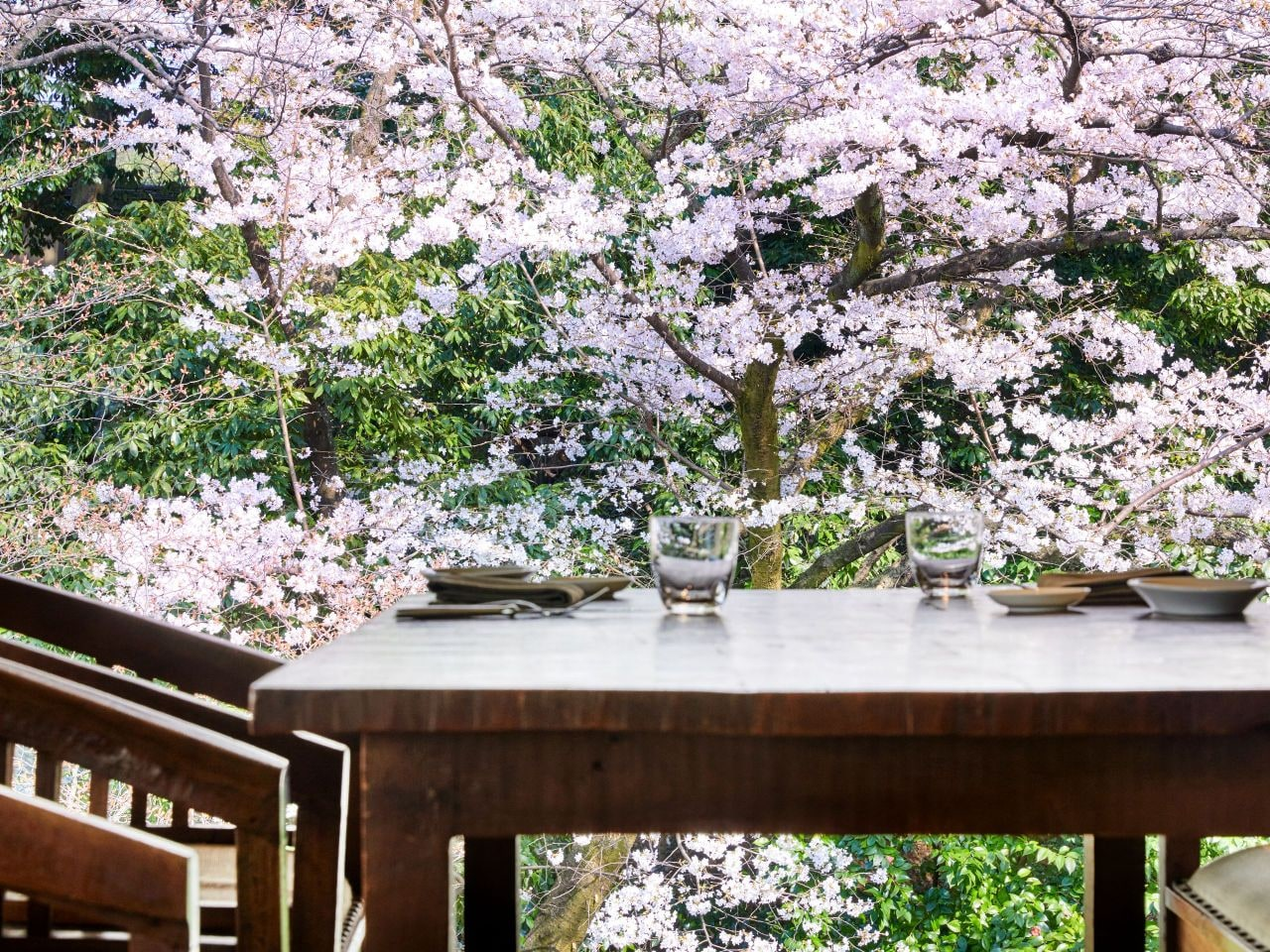 Trattoria Sette Sakura View Table