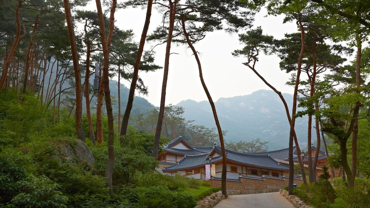 파크 하얏트 서울 웰니스 액티비티