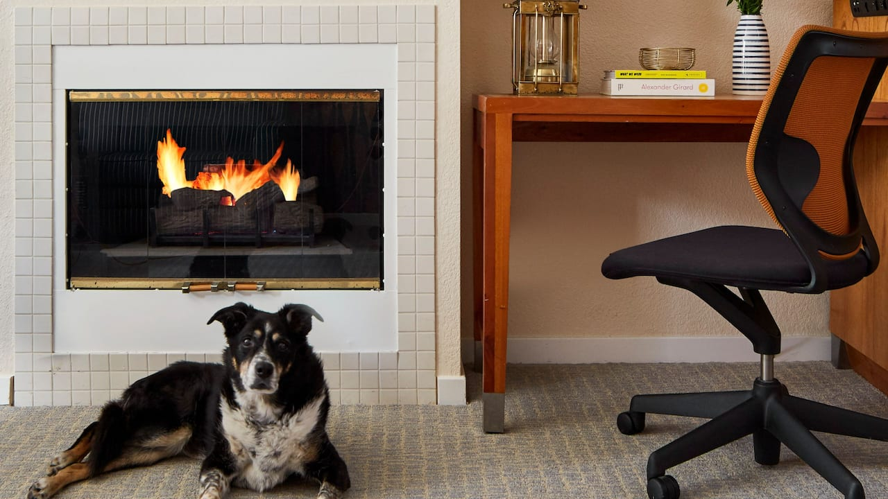 Pet Friendly Guestroom Fireplace