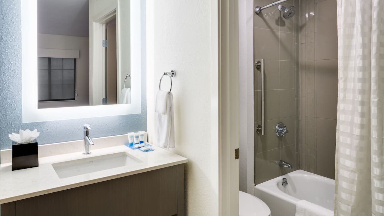 HYATT HOUSE BOSTON/WALTHAM  ADA Bathroom