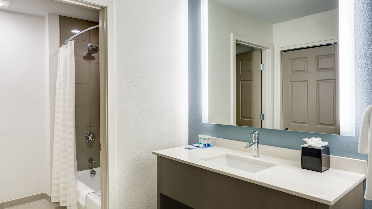 HYATT HOUSE BOSTON/WALTHAM Bathroom