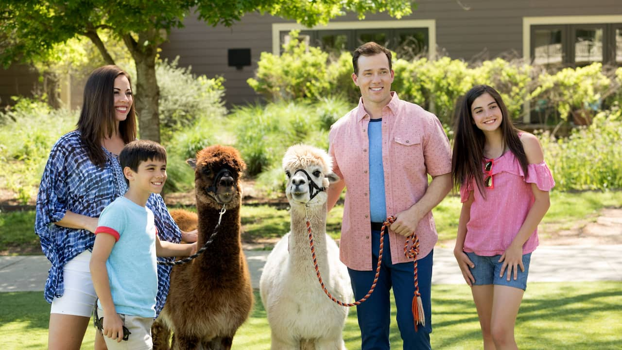 Family with Alpacas
