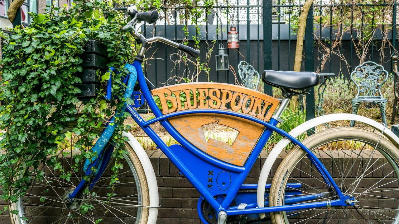 Andaz Blue Spoon Bike