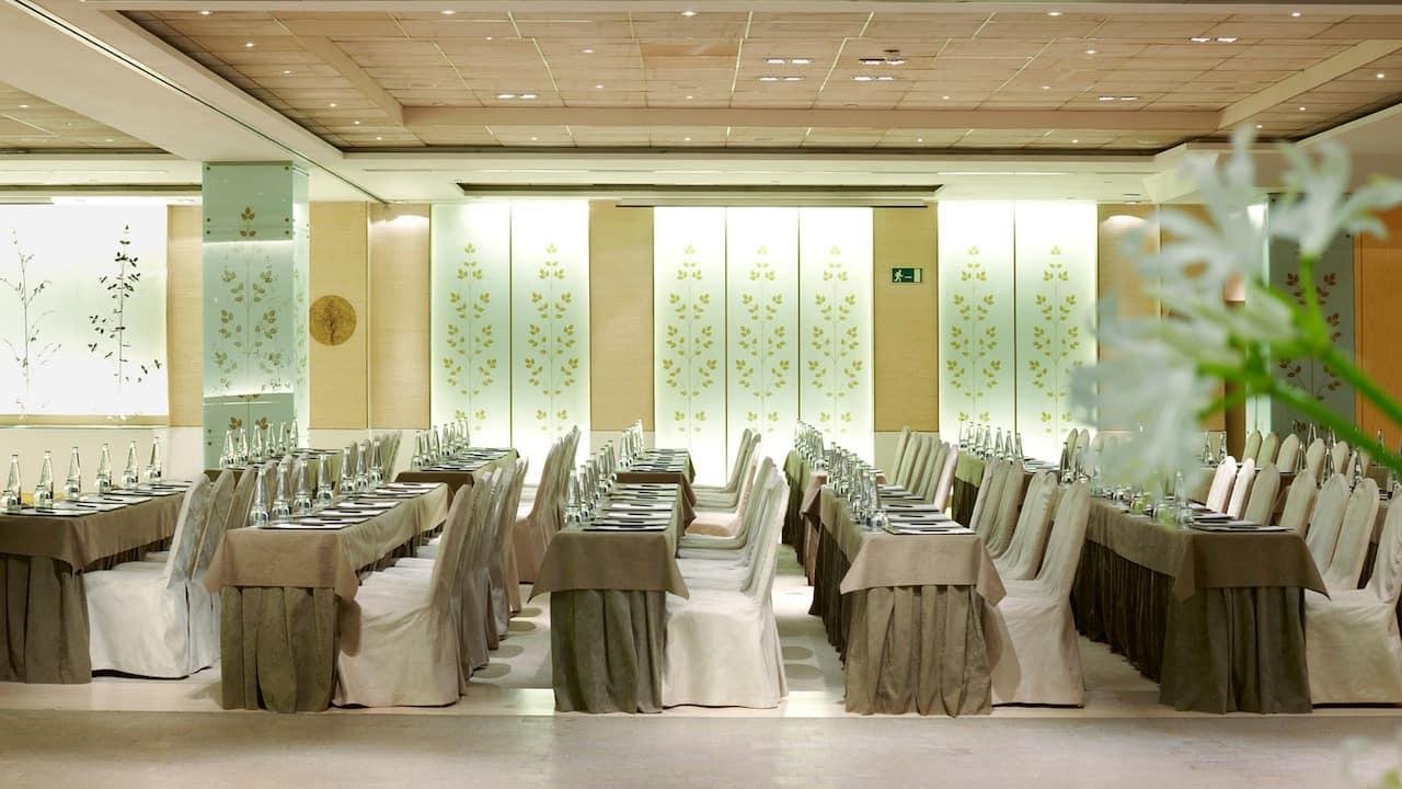 Hyatt Regency Hesperia Madrid Events Rooms