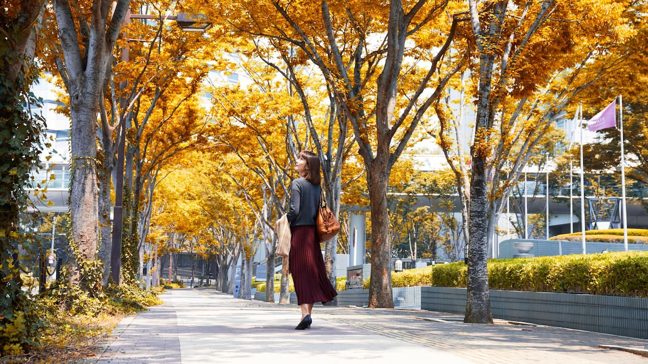 Hyatt Regency Osaka - Autumn walk around