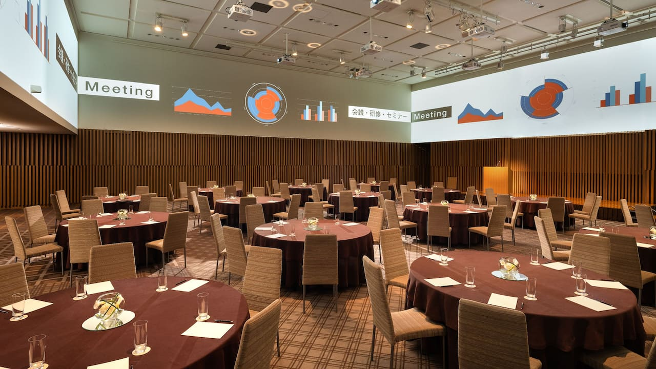 Ballroom surround projection system