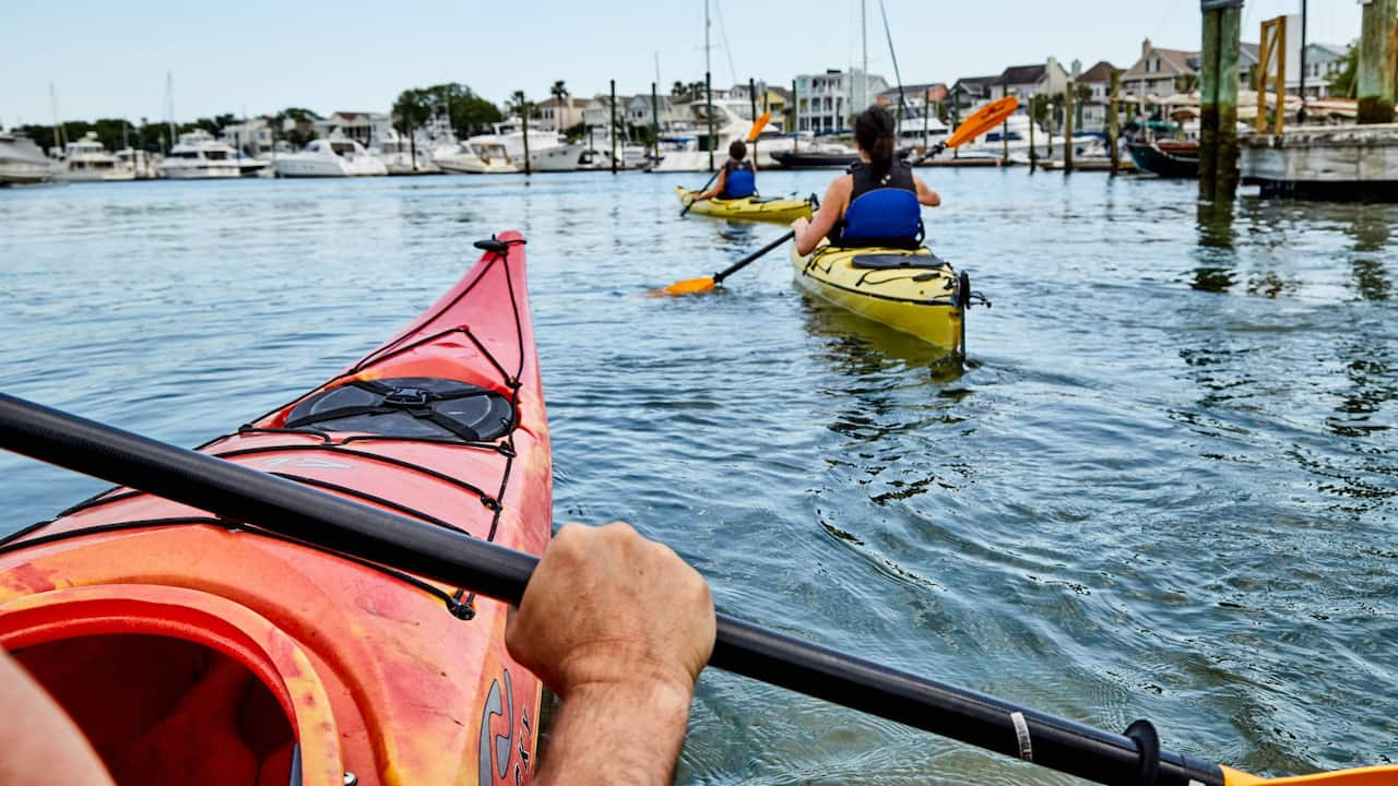 Intracoastal Kayaking Tours