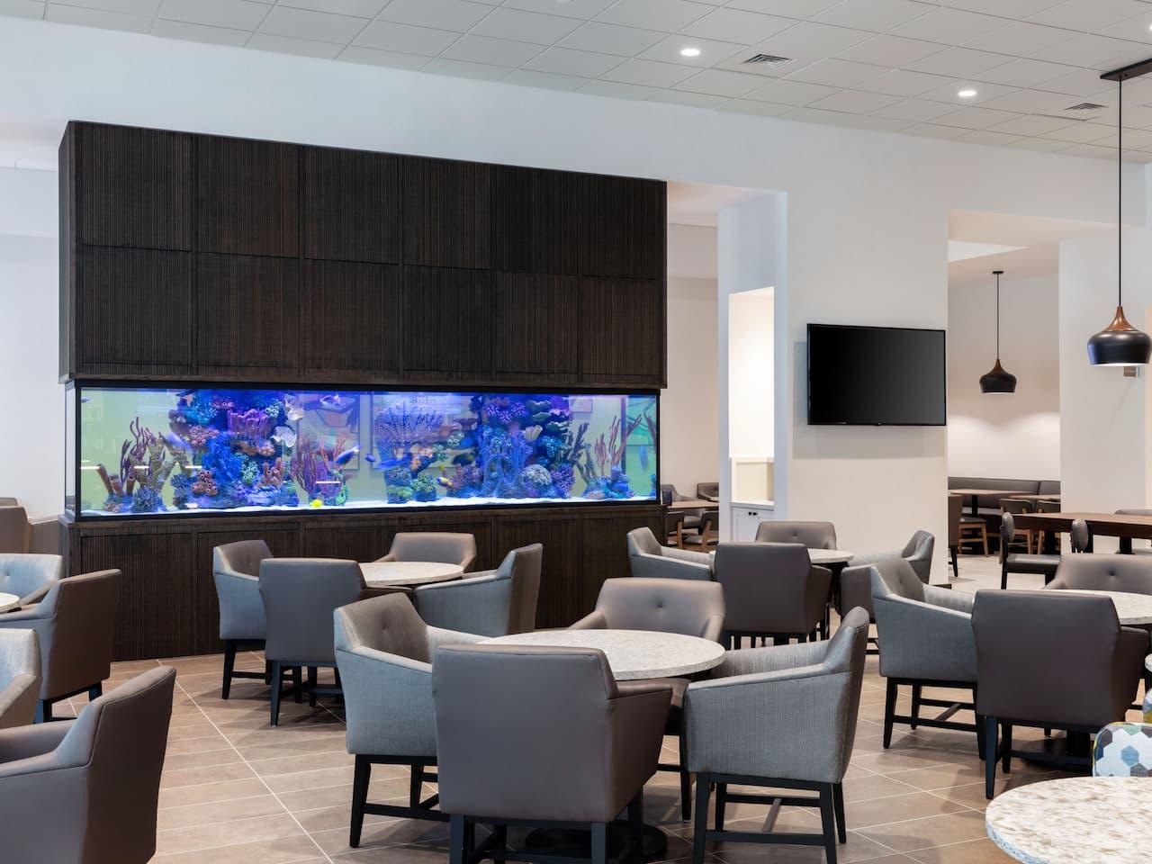 Lobby & Aquarium