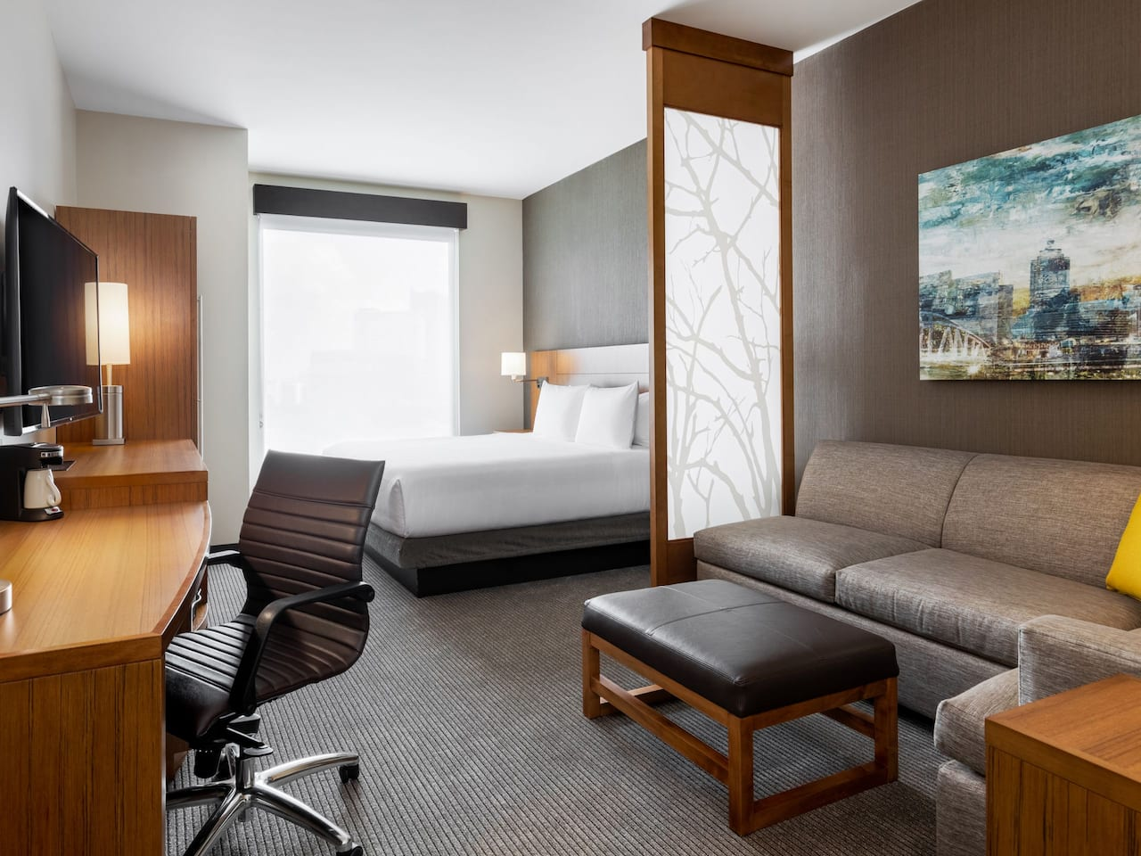 Hotels Downtown Atlanta with King Bed and Pull Out Sofa Bed with a View at Hyatt Place Atlanta/Centennial Park