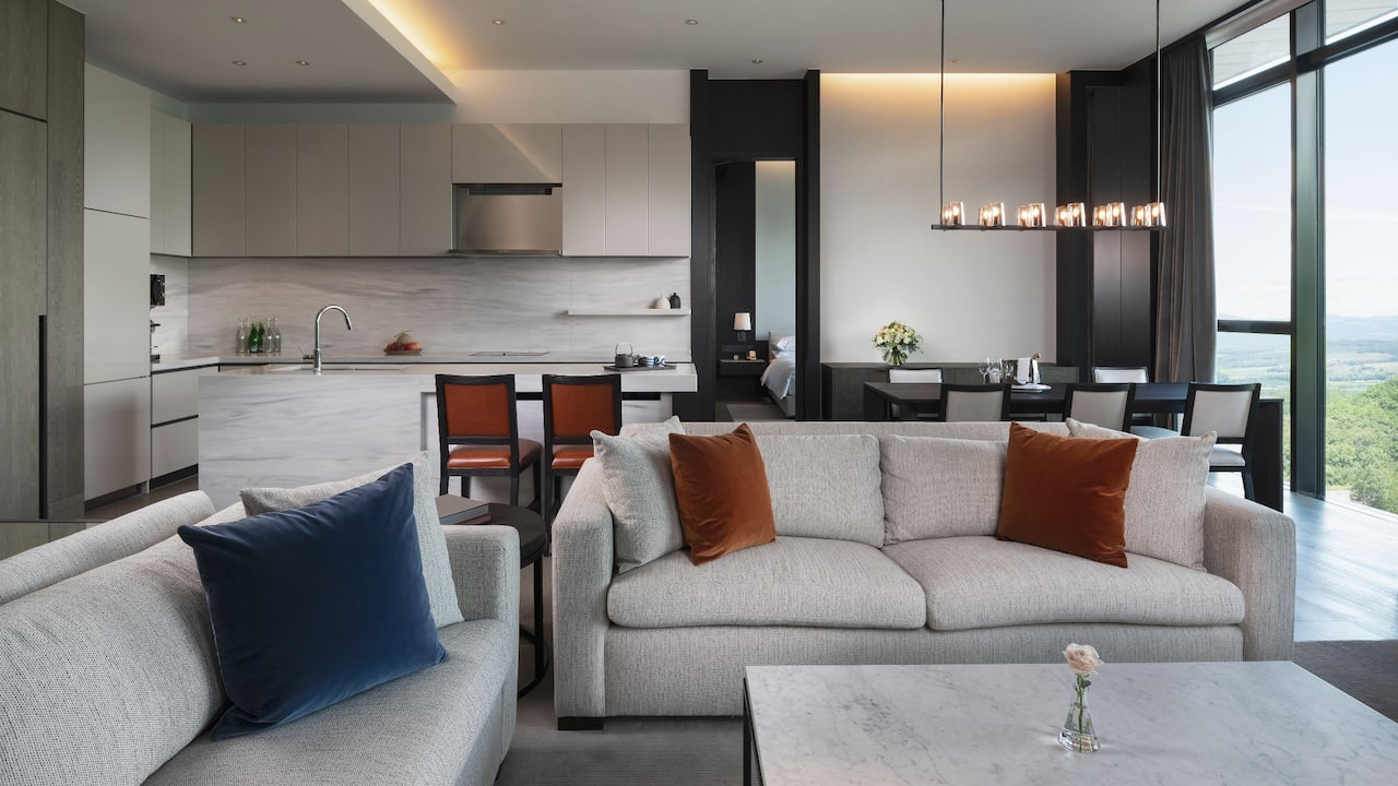 Residence Penthouse Living Area