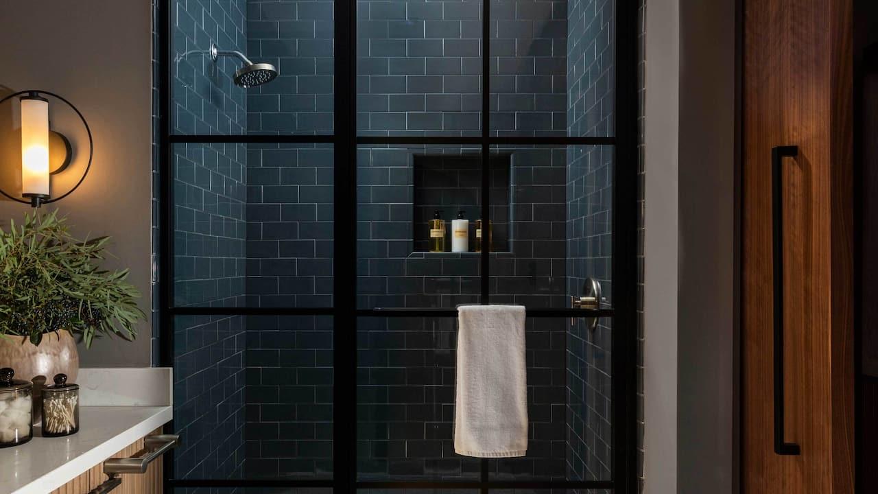 Model Room Bathroom Shower