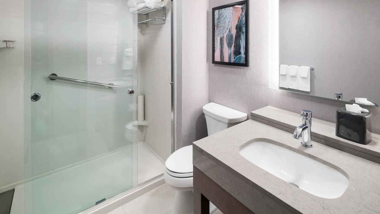 Den Guestroom Bathroom