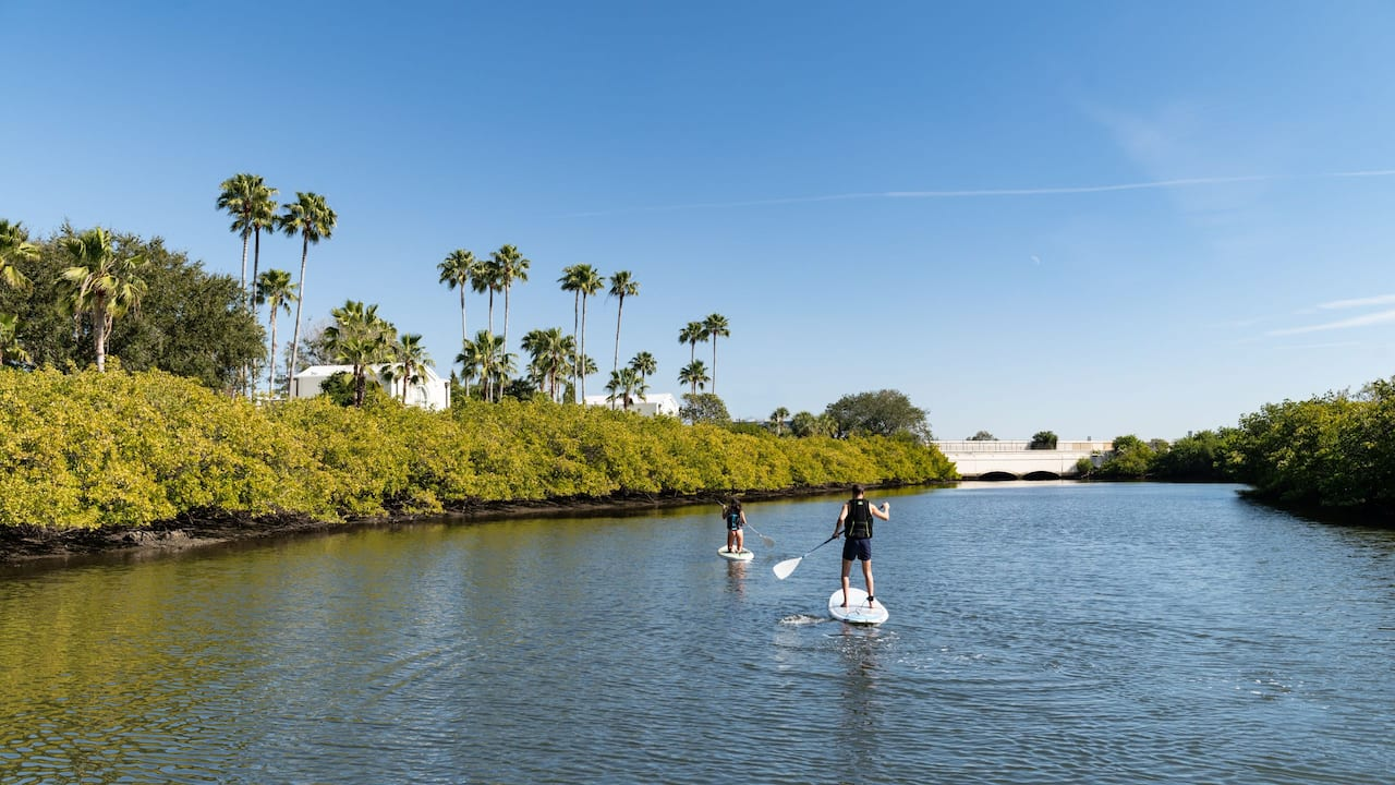 Paddle Boarding Couple Trees