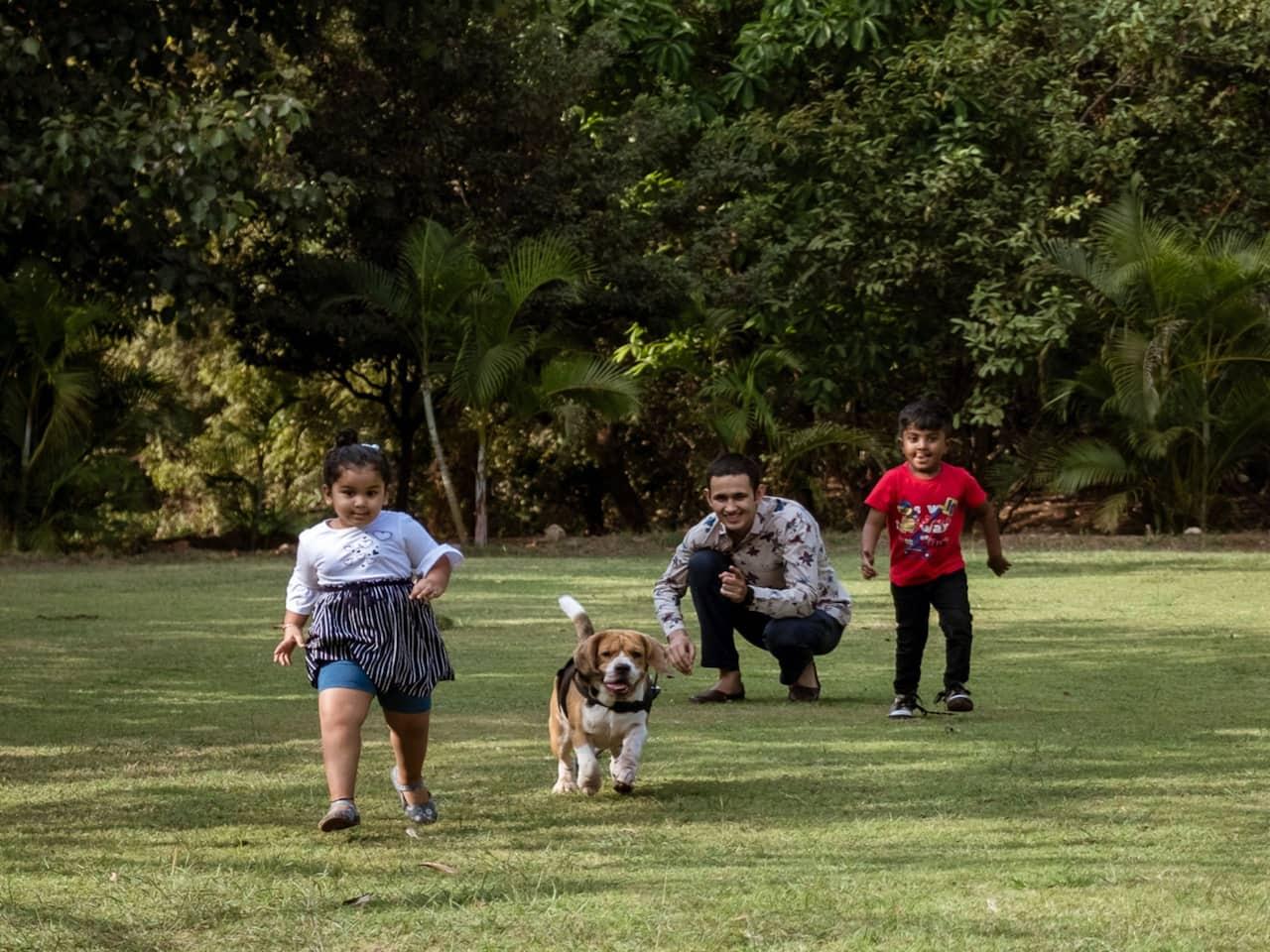 Kids Pet Play Area