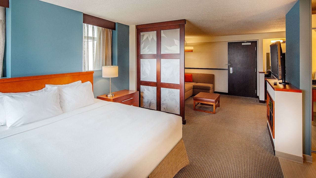 Hyatt Place Madison / Downtown Studio King Bed with Pull out Sofa Sleeper Bed Free WIFI in Madison WI